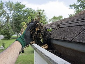 rain Gutter Cleaning Services Minnesota